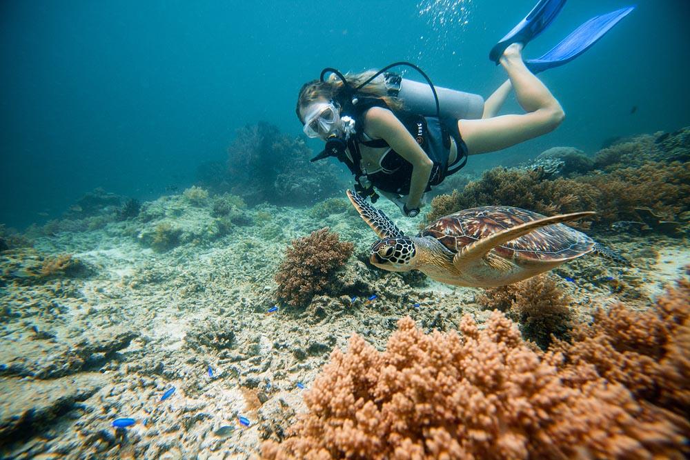 Snorkeling with Sea Turtles on Gili Trawangan - Underwater Photo